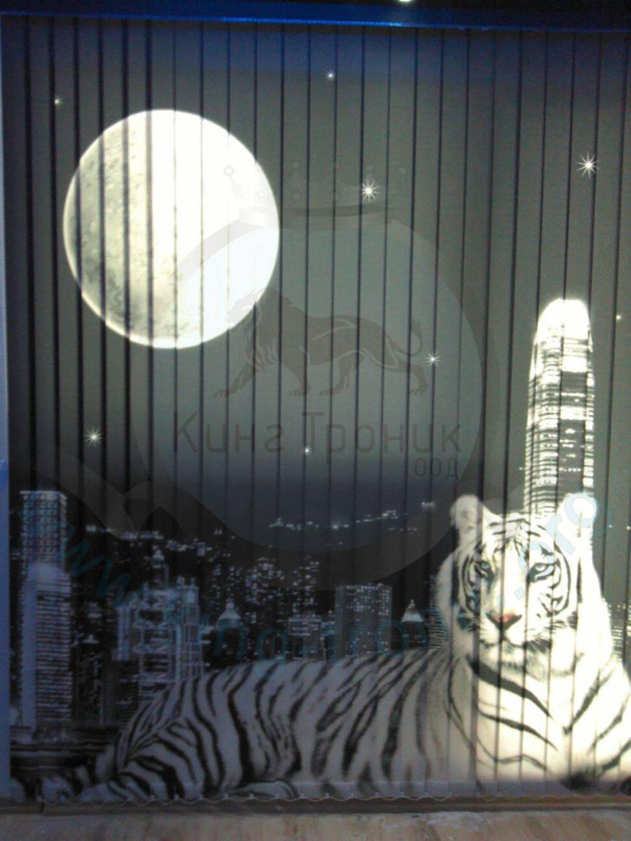 Вертикална фото щора - Индивидуален проект - Тигър - Бургас!